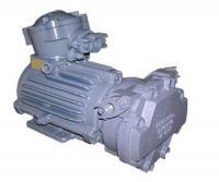 Двигатель асинхронный 2АИМТ100 - фото
