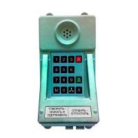 Переговорное устройство ТАШ-31ЕхC - фото №1